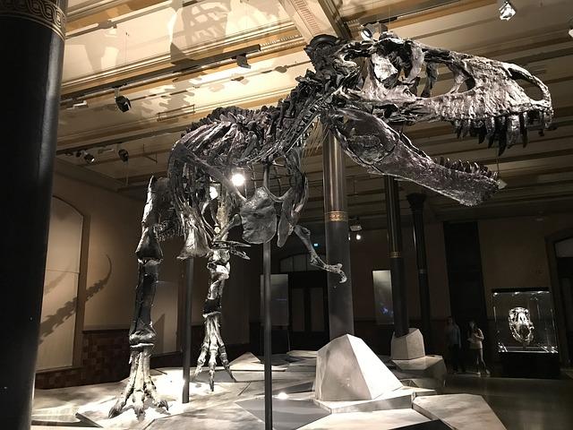 dinosaur-2368475_640